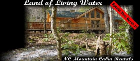 Secluded Log Cabin Hideaway - Vacation Rental in Andrews