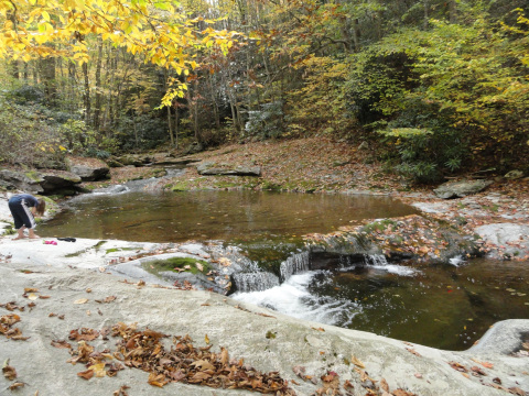 Beech Mountain & the surrounding area offer great places for trout fishing!