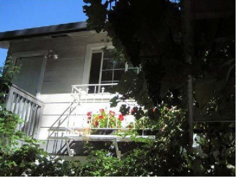Vineyard Cottage - Vacation Rental in Berkeley