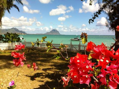 Beachfront Villa - West coast of Mauritius - Vacation Rental in Black River
