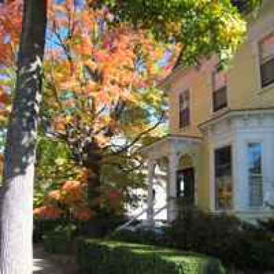 Parkside on Ellery - Bed and Breakfast in Cambridge