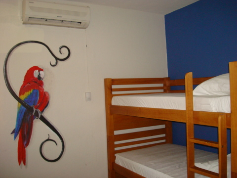 Macaw bedroom for four