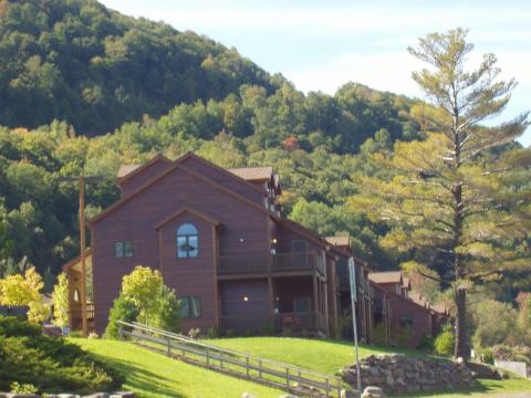 Mountain Condo - Vacation Rental in Catskills
