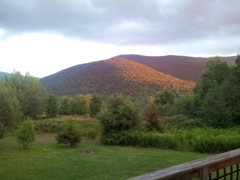 Hunter Mt-Amazing Views- 5 Min to Slopes! REDUCED  - Vacation Rental in Catskills