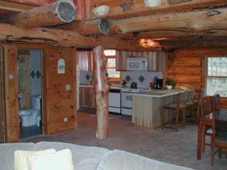 Mountain Log Cabin