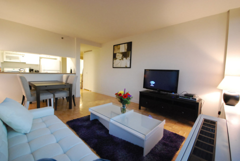 Luxury Romantic 1 bedroom Apt!!! - Vacation Rental in Chelsea
