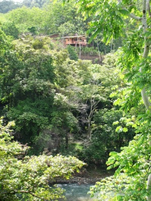 Jungle Retreat in Costa Rica - Vacation Rental in Dominical