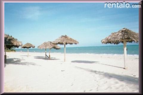 White Sand Beach Condo - Vacation Rental in Grand Bahama