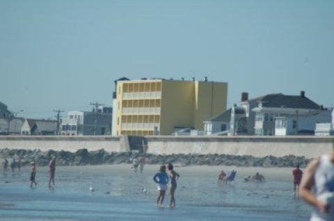 Beachfront! Hampton Beach Vacation Rental