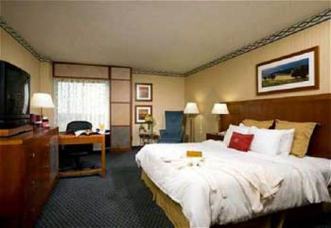 Crowne Plaza Dulles Aiport
