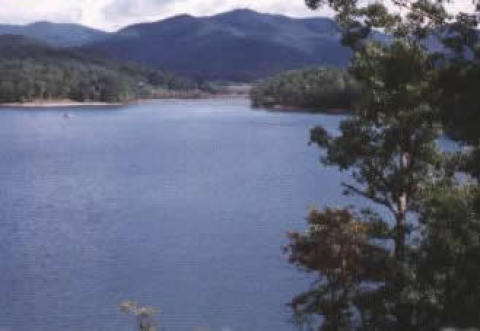 View - Hiawassee Vacation Rental