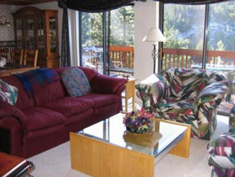 Spectacular Lake Tahoe and Diamond Peak Views! - Vacation Rental in Incline Village