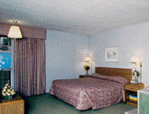 Econo lodge Indianapolis.