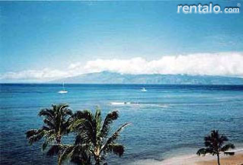 Beachfront  Condos - Vacation Rental in Kahana