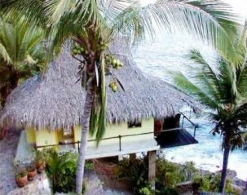 Thatched Roof Bungalows in Paradise- - Hotel in Manzanillo