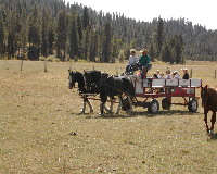 4D Longhorn Guest Ranch,  Idaho > Mccall - Vacation Rental in Mccall