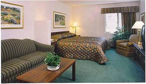 Holiday Inn Express Hotel & Suites Downtown Mi