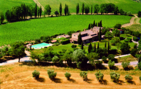 Farmhouse B&B in Montepulciano - Bed and Breakfast in Montepulciano