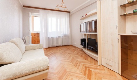 Apartments in downtown overlooking the Moscow Zoo - Vacation Rental in Moscow