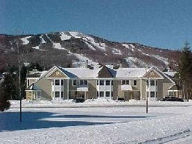 Greenspring Rentals - Vacation Rental in Mt Snow