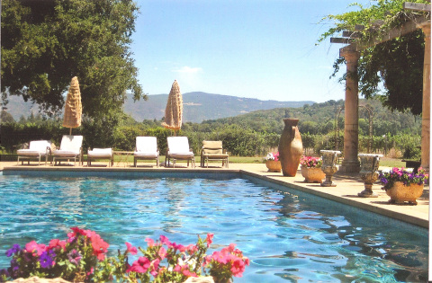 Napa Valley Vineyard View Estate Rental - Vacation Rental in Napa