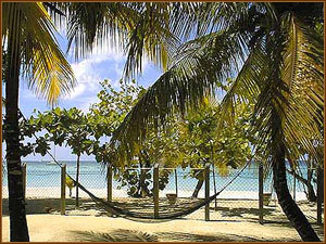 Nirvana on the Beach - Vacation Rental in Negril