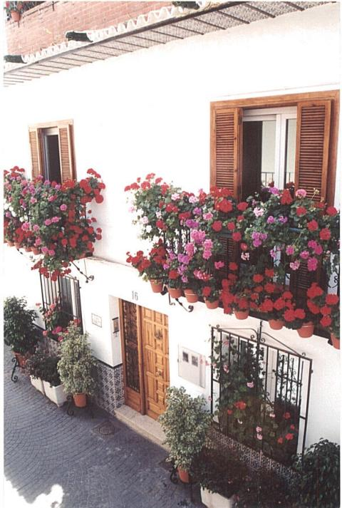 Flower house Casa Charlotte with WI-Fi internet !! - Vacation Rental in Nerja