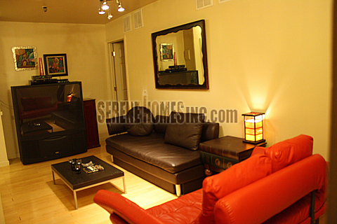 Beautiful Luxurious two bedroom in Downtown - Vacation Rental in New York City