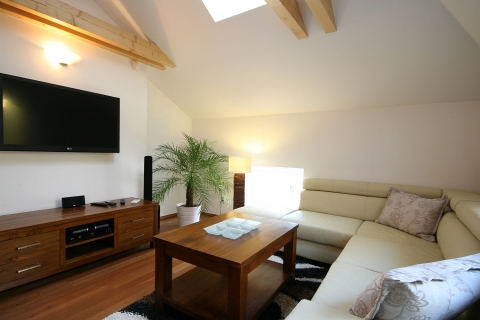 Apartment Attic Olivova - Next to Wenceslas Square - Vacation Rental in Prague
