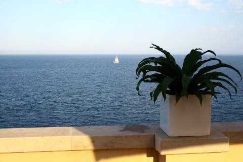 Palazzo Colpace - Vacation Rental in Sicily