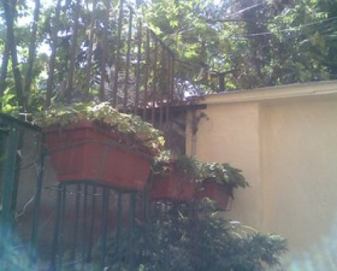 Studio for rent in the top centre of city Sofia