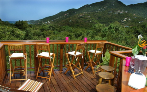 Ocean Views over the Jungle Canopy - St John Vacation Homes