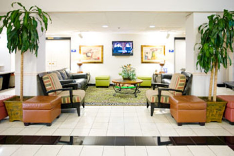 Best Western All Suites Hotel Near USF Behind Busc