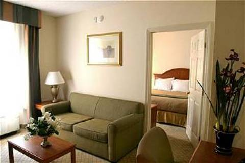 Holiday Inn Express Hotel & Suites New Tampa I