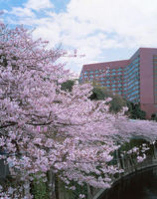 FOUR SEASONS CHINZAN-SO