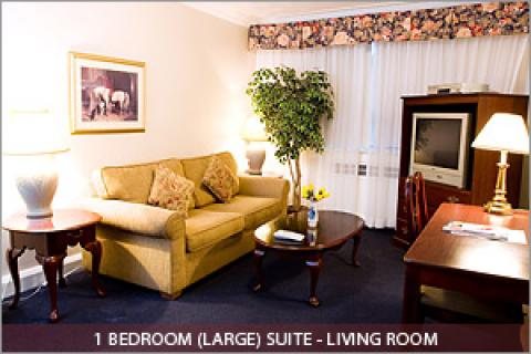 1 Bedroom Suite Living Room - Toronto Hotels