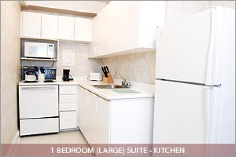 1 Bedroom Suite Kitchen - Toronto Hotels