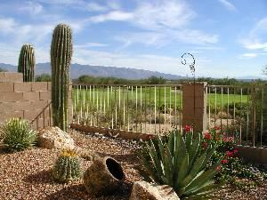 Arizona National - Vacation Rental in Tucson