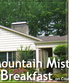 Luxury Home - Bed and Breakfast in Waynesville