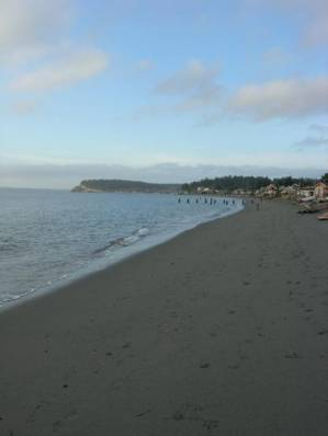 Mutiny Bay Getaway - spectacular beachfront estate - Vacation Rental in Whidbey Island